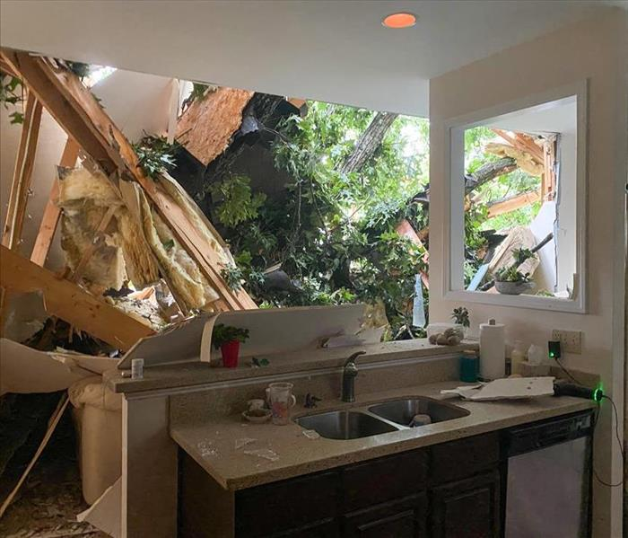 Large tree branch collapsed a roof of a house